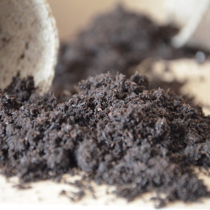 Špeciálny substrát - substrát na pestovanie semien okrasných rastlín - 100 g